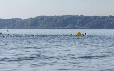 Top 10 Tips for Open Water Swimmers